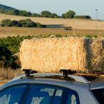 Bagażnik samochodowy dachowy do Volkswagen Passat '05- CRUZ